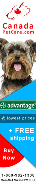 advantage for dogsflea and tick control treatment