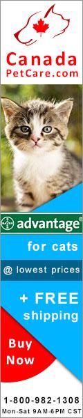 advantage for catsflea and tick control treatment