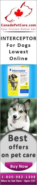 CanadaPetCare.com-Interceptor-Dogs