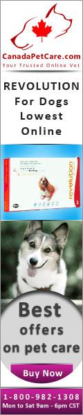 canadapetcare-Revolution-Dogs