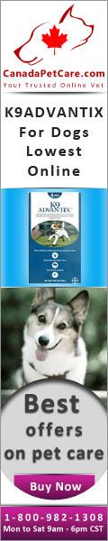 canadapetcare-K9Advantix-Dogs