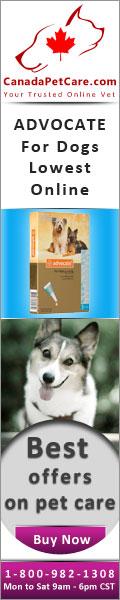 canadapetcare-Advocate-Dogs