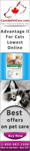 CanadaPetcare.com-AdvantageII-Cats