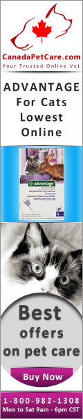 CanadaPetCare.com-Advantage-Cats