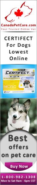 CanadaPetCare.com-Certifect-Dogs