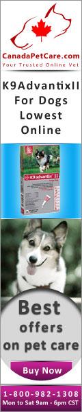 CanadaPetCare.com-K9AdvantixII-Dogs